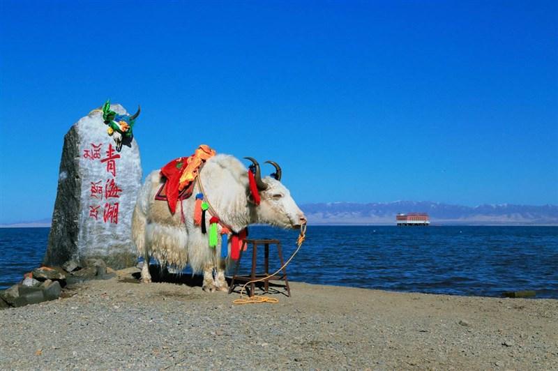 西宁青海湖、青藏铁路、拉萨布达拉宫、藏族家访、林芝尼洋阁、巴松措三飞一卧八天